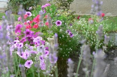 Jardin en Touraine proche Clos Chesneraie
