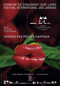 Affiche-Festiva-Chaumont2014