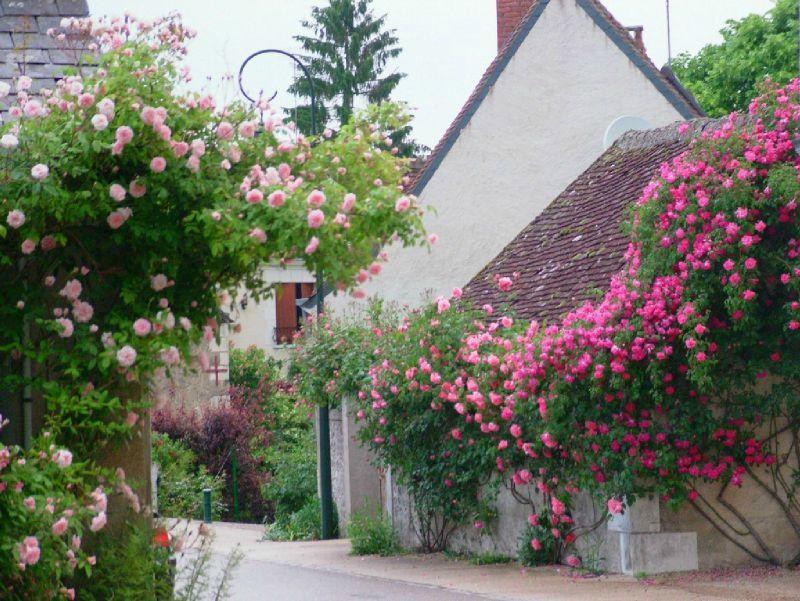 chedigny-village-fleuri
